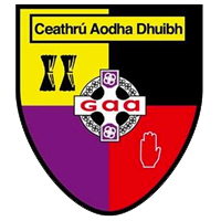 Carryduff GAA Club Website